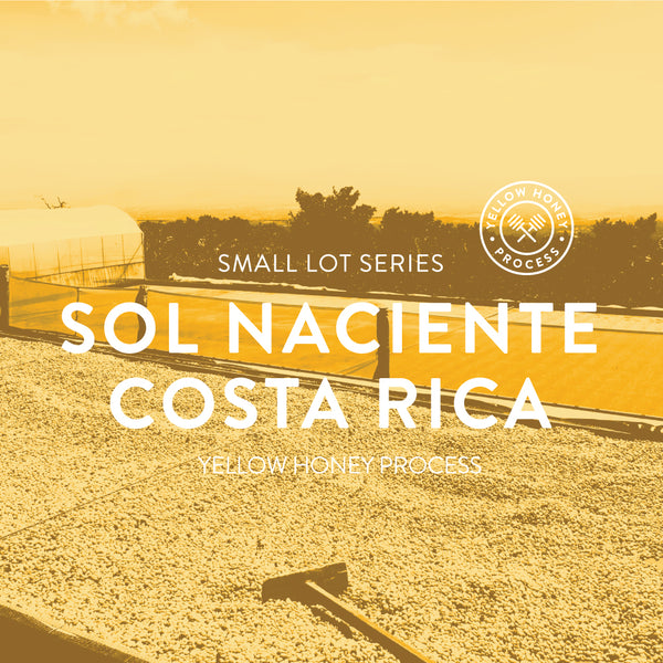 Sol Naciente Costa Rica Honey Process Yellow