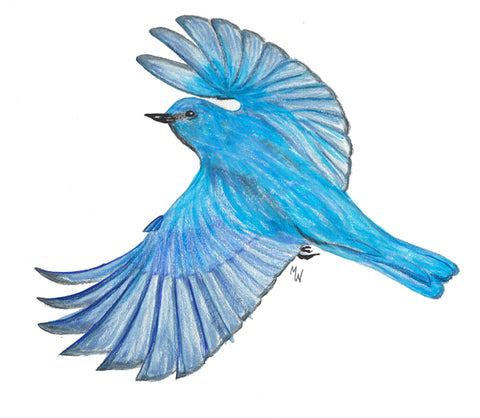 Mountain Bluebird - Mini Puzzle