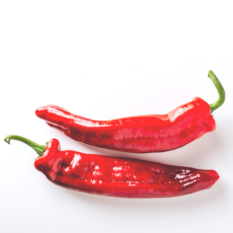 Tabasco peppers Hot chili peppers seed starter kit