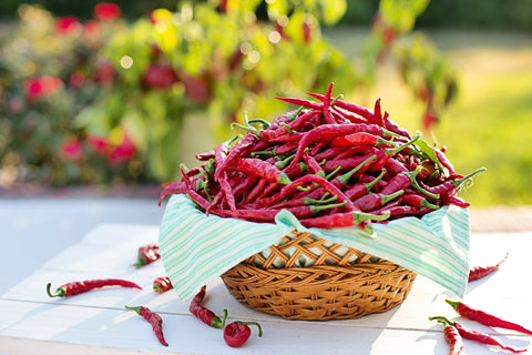 Basket filled with Fresh Chili peppers