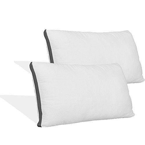 Coop Home Goods - Pillow Protector - Waterproof and Hypoallergenic - Protect Your Pillow Against Fluids/Spills/Mites/Bed Bugs - Oeko-TEX Certified Lulltra Fabric - Queen (2 Pack) - PHUNUZ