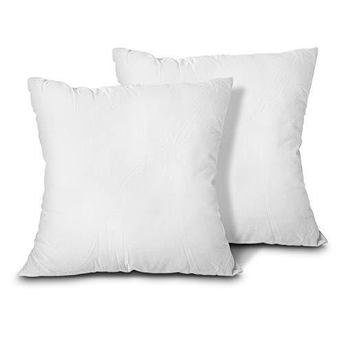 EDOW Throw Pillow Inserts, Set of 2 Lightweight Down Alternative Polyester Pillow, Couch Cushion, Sham Stuffer, Machine Washable. (White, 18x18) - PHUNUZ