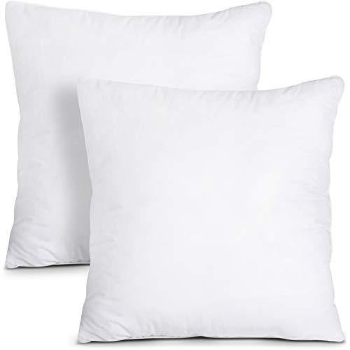 Utopia Bedding Throw Pillows Insert (Pack of 2, White) - 20 x 20 Inches Bed and Couch Pillows - Indoor Decorative Pillows - PHUNUZ