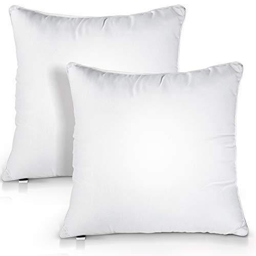 HOKEKI 18x18 Pillow Insert,Premium Pillow Stuffing Throw Pillow Insert,Square-18x18 Pillow Insert Set of 2,Pillows for Couch - Indoor Decorative Pillows Standard/White - PHUNUZ