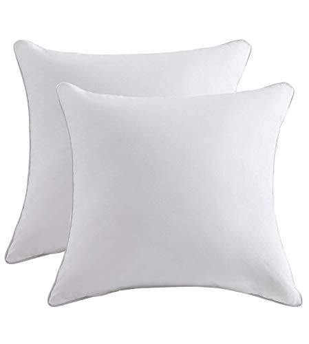 Lipo Throw Pillow Inserts (Pack of 2, White), Decorative Pillows Inserts with 100% Cotton Cover, Square Pillow for Cushion Bed Couch Sofa Car, 18x18 Inch - PHUNUZ