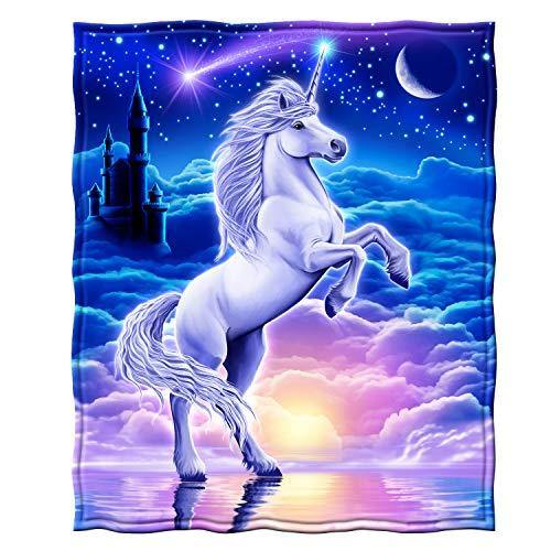 Dawhud Direct Super Soft Full/Queen Size Plush Fleece Blanket, 75