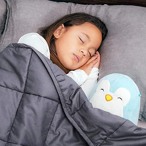 Bed Buddy Weighted Blanket for Kids - Weighted Blanket Twin Size - Heavy Blanket with Weighted Glass Beads, Grey, 7 pounds, for Kids and Toddlers Over 1 Years Old - PHUNUZ