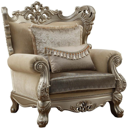 Acme Furniture Ranita Chair in Champagne 51042 image