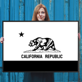 California Flag Wall Art