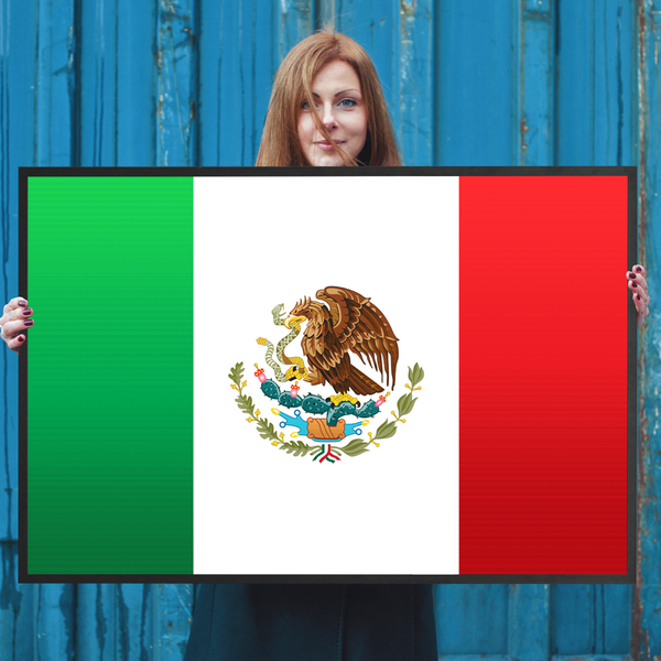 Mexico Flag Wall Art