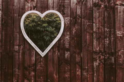 Heart shaped mirror hung up on garden fence