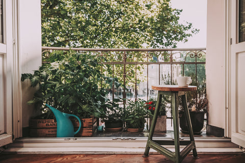 Balcony with garden plants in containers