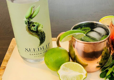 Non-Alcoholic Moscow Mule Drink