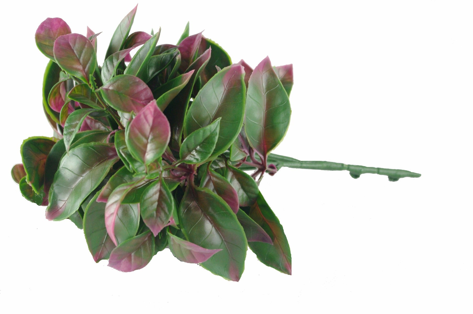 Purple And Green Jasmine Stem UV 25cm