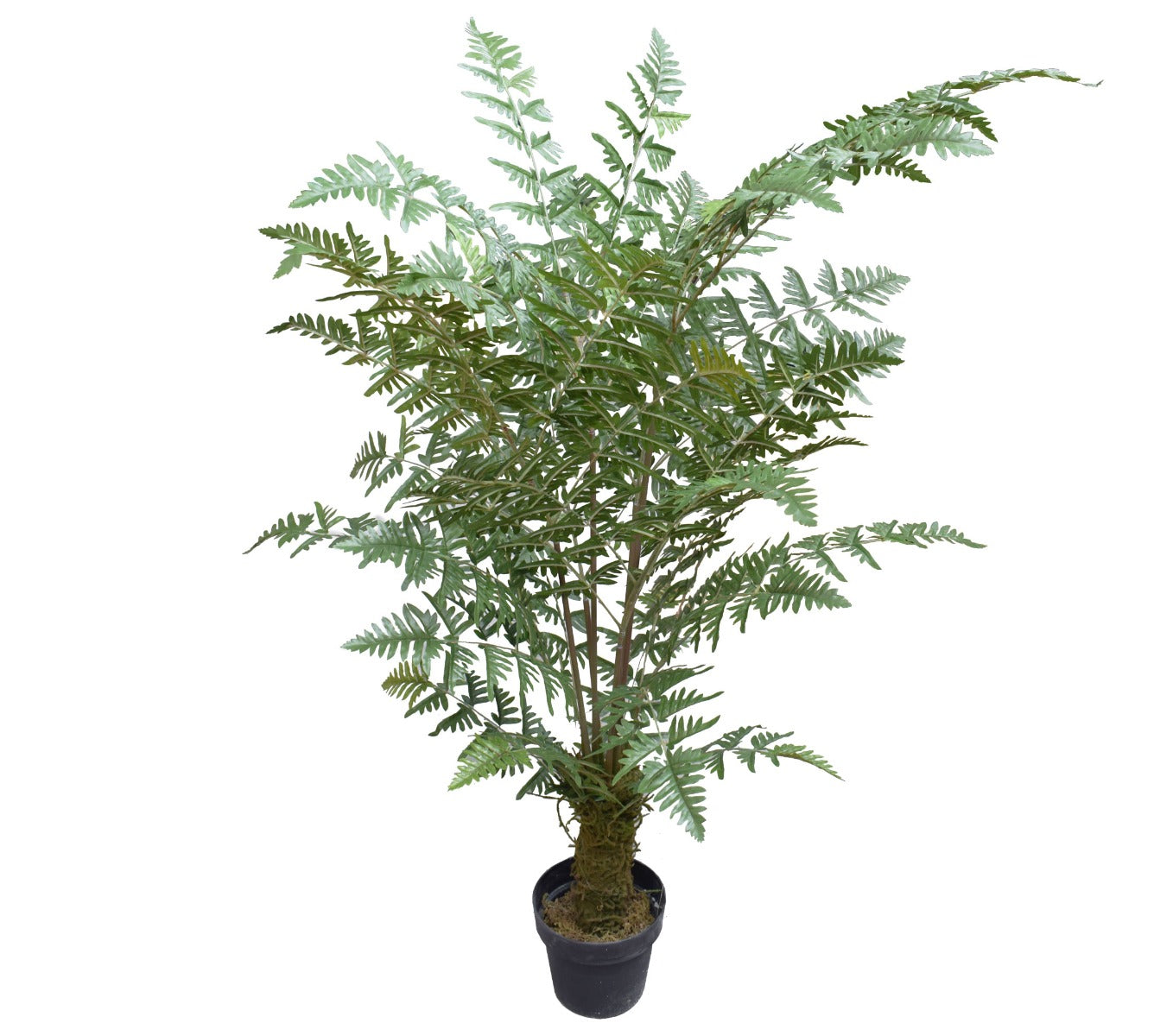 Artificial Fern Palm Tree 150cm