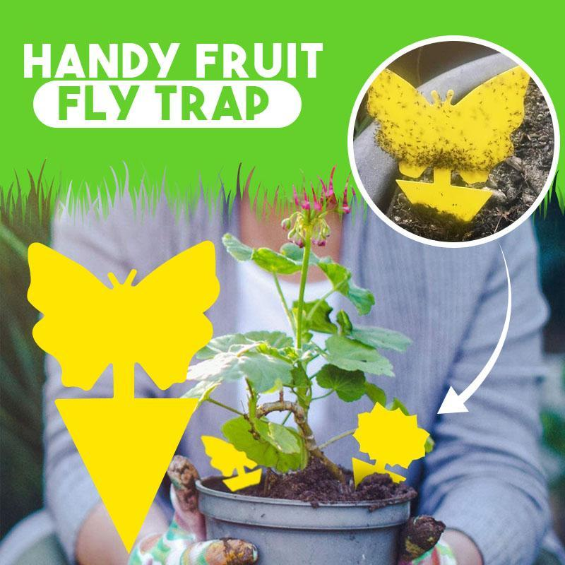 Handy Fruit Fly Trap