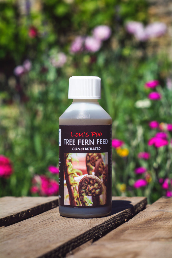 Lou's Poo, Fern Feed (Liquid Concentrate)