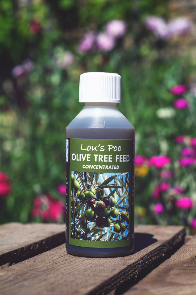 Lou's Poo, Olive Tree Feed (Liquid Concentrate)