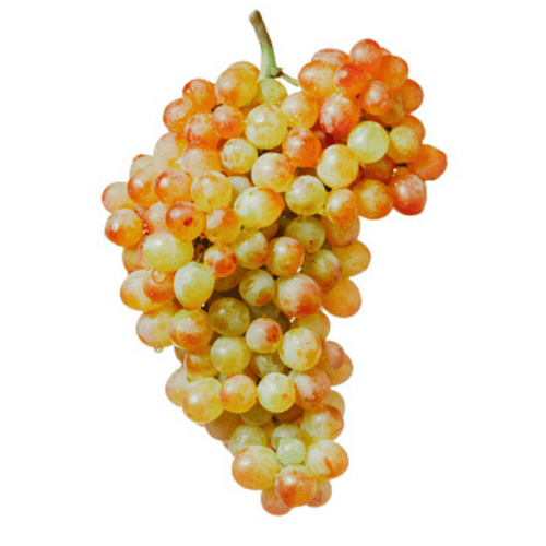 Pink Muscat Grapes, Seedless