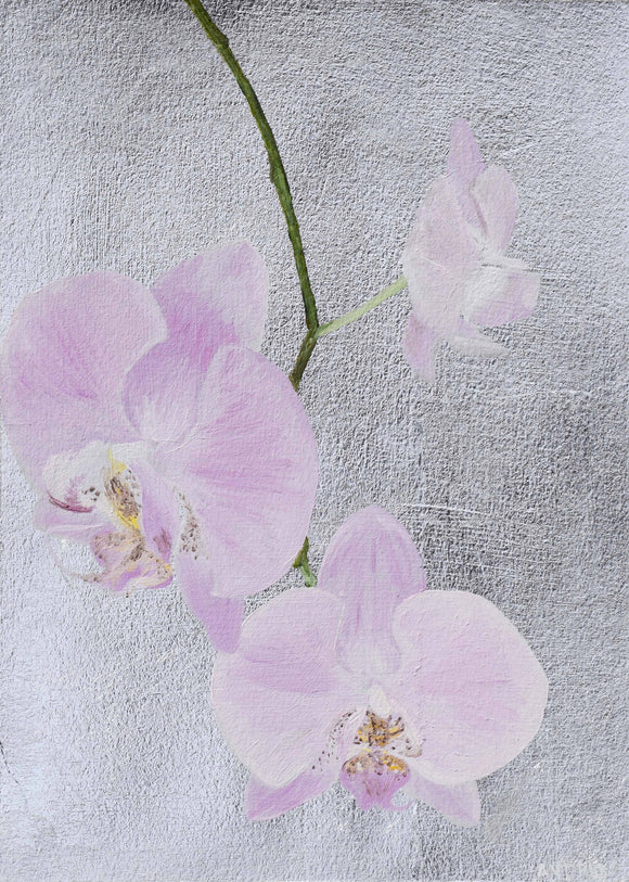 Orchid 5 12x9