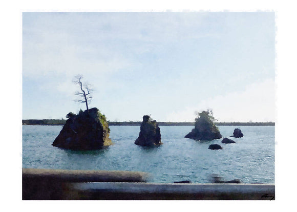 Islands, Oregon Coast
