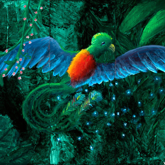 Quetzal Limited Edition fine art print