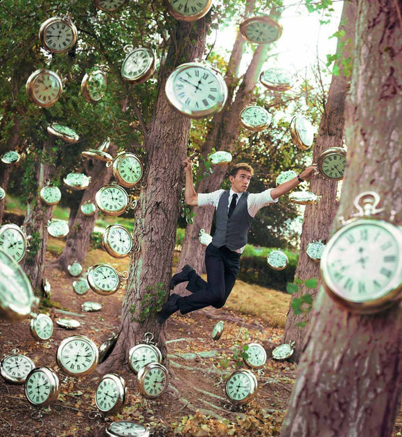 Forest of Clocks