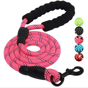 Dog Harness Walking Lead Leash