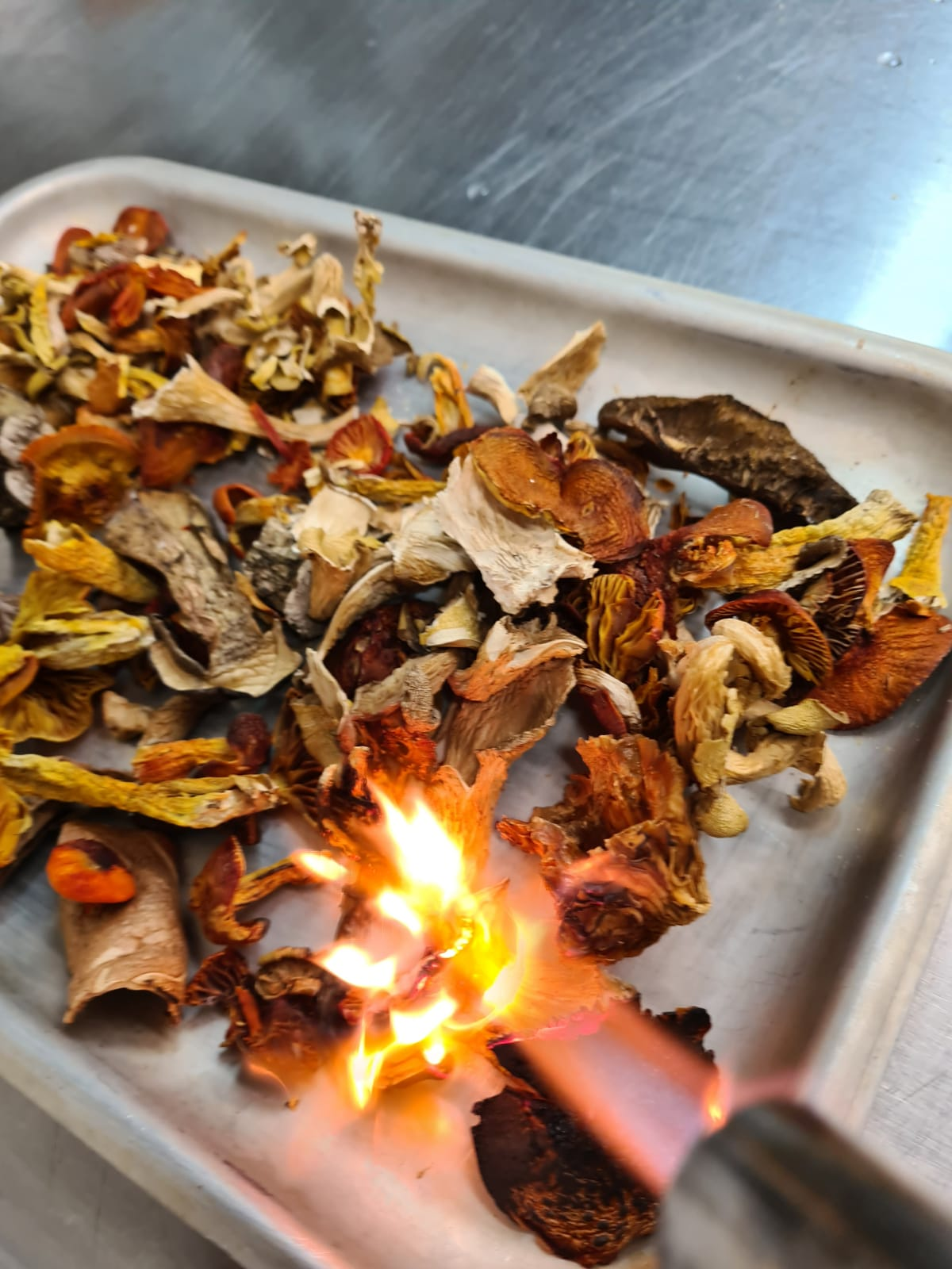 wild-mushrooms-delivery