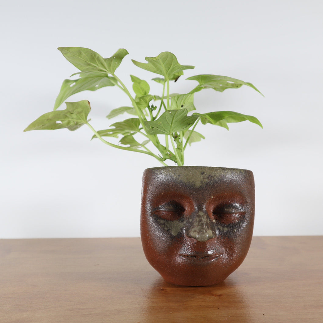 Peaceful Small Wood-fired Face-Planter