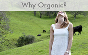 The Benefits of Organic Cotton Fabric