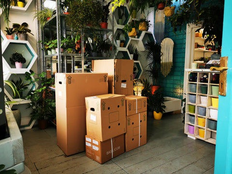 delivery day at tiny utopia HQ... plenty of houseplants ready to fill your shelves