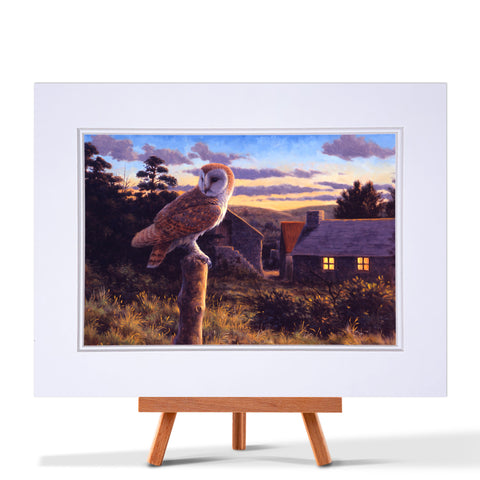 Barn Owl at Dusk Fine Art Print