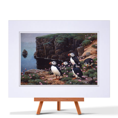Puffins On Cliff Edge Fine Art Prints