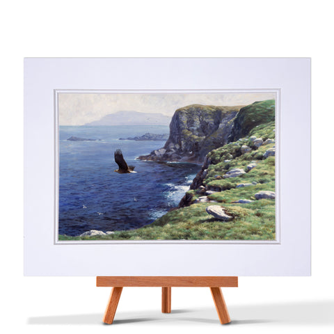 White-Tailed Eagle Fine Art Print