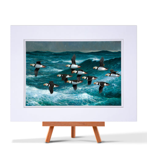 Puffins Taking Flight Fine Art Print