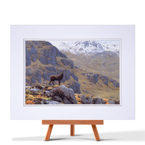 Stag Early Spring Fine Art Print