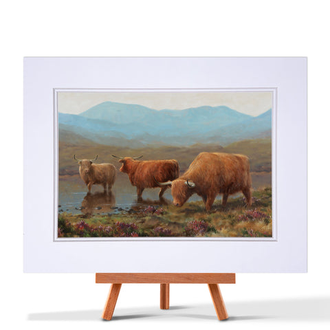 Highland Cattle Lake Fine Art Print