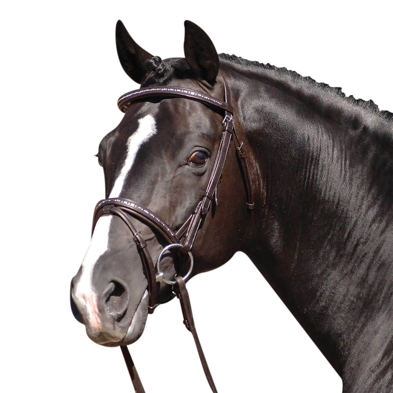 CALDENE BRIDLE FLASH CRYSTAL WITH REINS HAVANA