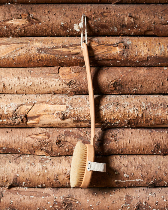 Long handled back brush in beechwood-horsehair and fibre