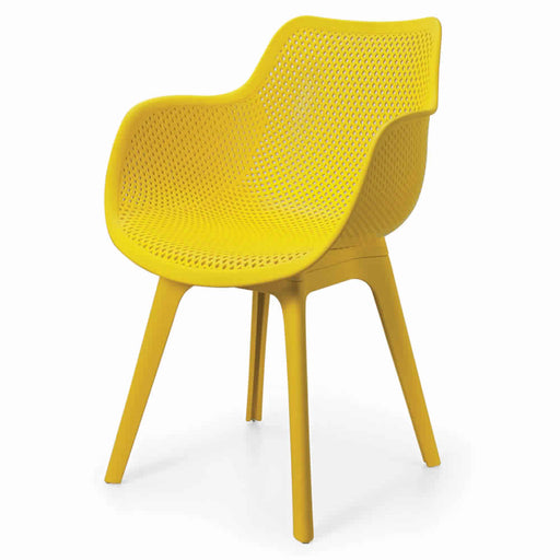 Plastic Cafe Chair with Back Support DORN