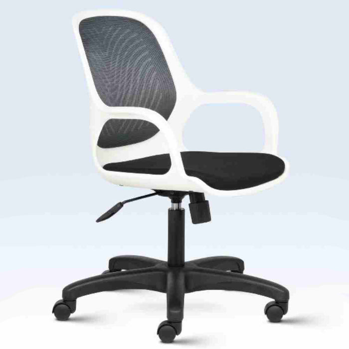 Work from Home Ergonomic Office Chair Spa Low Back