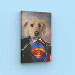 SuperHero - A unique flat about your pet