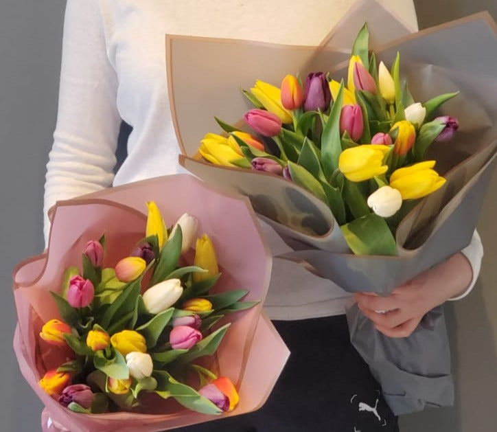 Mixte Tulips