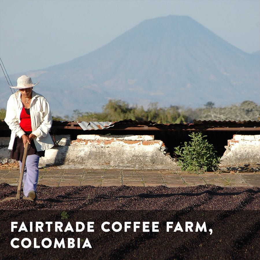 The Classic Fairtrade Blend