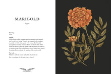 Load image into Gallery viewer, Floriography: An Illustrated Guide to the Victorian Language of Flowers