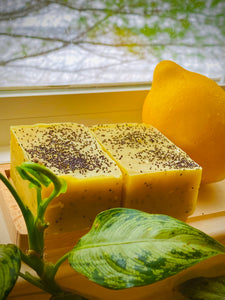 Lemon and Poppy Seed Soap Bar