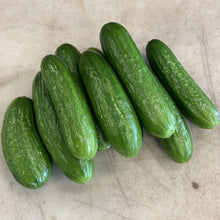 Load image into Gallery viewer, English Cucumbers