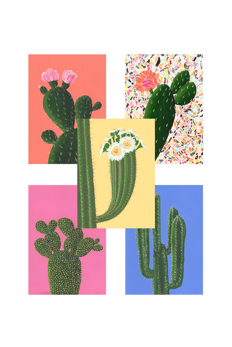 CACTI PACK