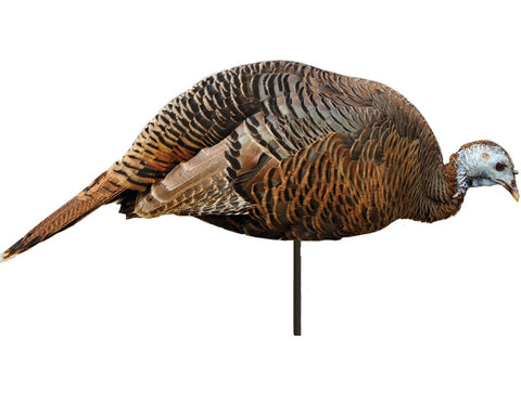 Montana Decoy™ Dinner Belle 2D Hen Turkey Decoy